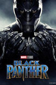 Pantera negra wh82cicevb thumb