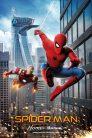 Spider man homecoming 75633 poster.jpg