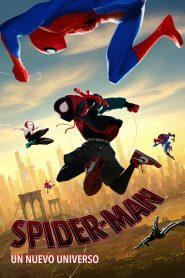 Spider man un nuevo universo 75215 poster.jpg