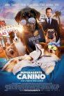 Superagente canino 77507 poster.jpg