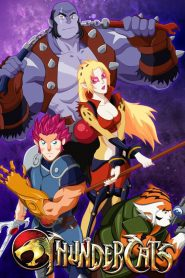 Thunder cats 76507 poster.jpg