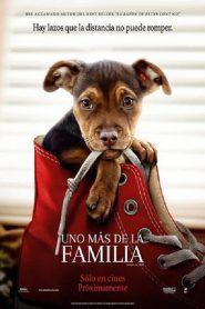 Uno mas de la familia 77833 poster.jpg