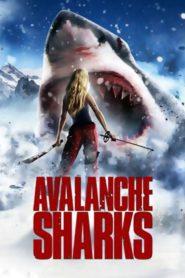 Avalanche sharks 79312 poster.jpg