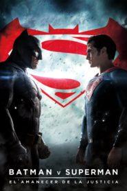 Batman v superman el amanecer de la justicia 82481 poster.jpg