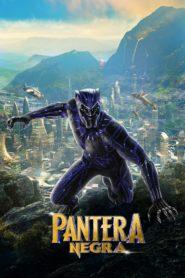 Black panther 83858 poster.jpg