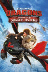 Como entrenar a tu dragon el origen de las carreras de dragones 80022 poster.jpg