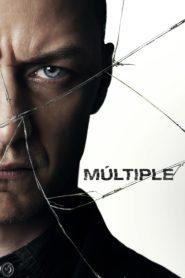 Multiple 83197 poster.jpg