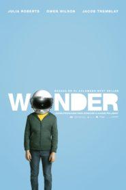 Wonder 83860 poster.jpg