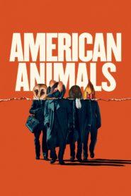 American animals 85747 poster.jpg