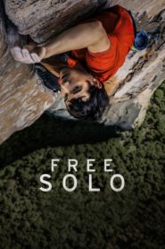 Free solo 87260 poster.jpg