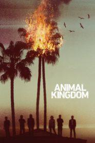 Animal kingdom 94586 poster.jpg