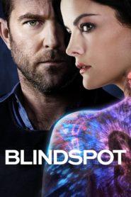 Blindspot 95080 poster.jpg