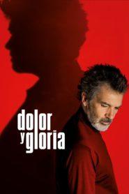 Dolor y gloria 94072 poster.jpg