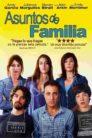 Asuntos de familia 98388 poster.jpg