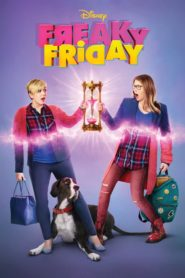 Freaky friday 98678 poster.jpg