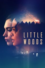 Little woods 96336 poster.jpg