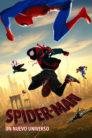 Spider man un nuevo universo 96888 poster.jpg