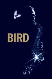 Bird 101555 poster.jpg