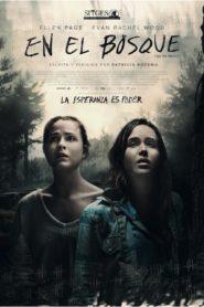 En el bosque 102234 poster.jpg