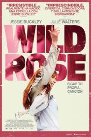Wild rose 100882 poster.jpg