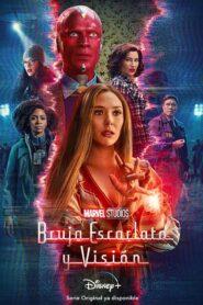 Bruja escarlata y vision 106156 poster.jpg