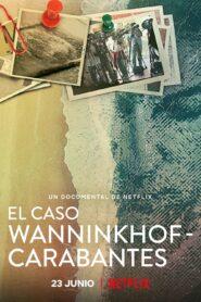 El caso wanninkhof carabantes 107358 poster.jpg