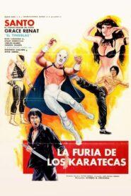 La furia de los karatecas 107315 poster.jpg