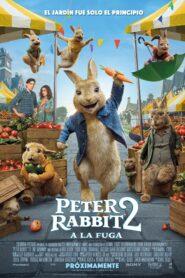 Peter rabbit 2 a la fuga 107226 poster.jpg