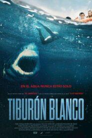 Tiburon blanco 107676 poster.jpg