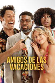 Amigos de las vacaciones 108779 poster.jpg