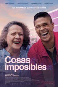 Cosas imposibles 108169 poster.jpg