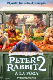 Peter rabbit 2 a la fuga 107829 poster.jpg