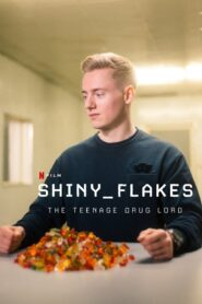 Shiny flakes el cibernarco adolescente 107860 poster.jpg